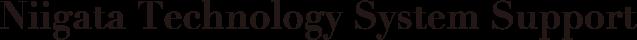 Niigata Tecnology System Support